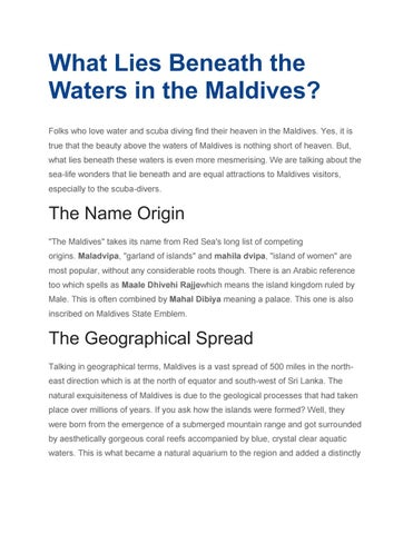 What Lies Beneath the Waters in the Maldives? by 360 world