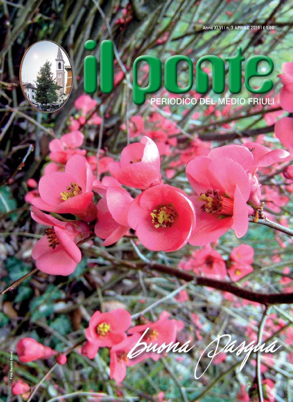 Grandi Alberi Da Giardini alberi uccellini ecc. 25 bella da giardino a tema pulsanti
