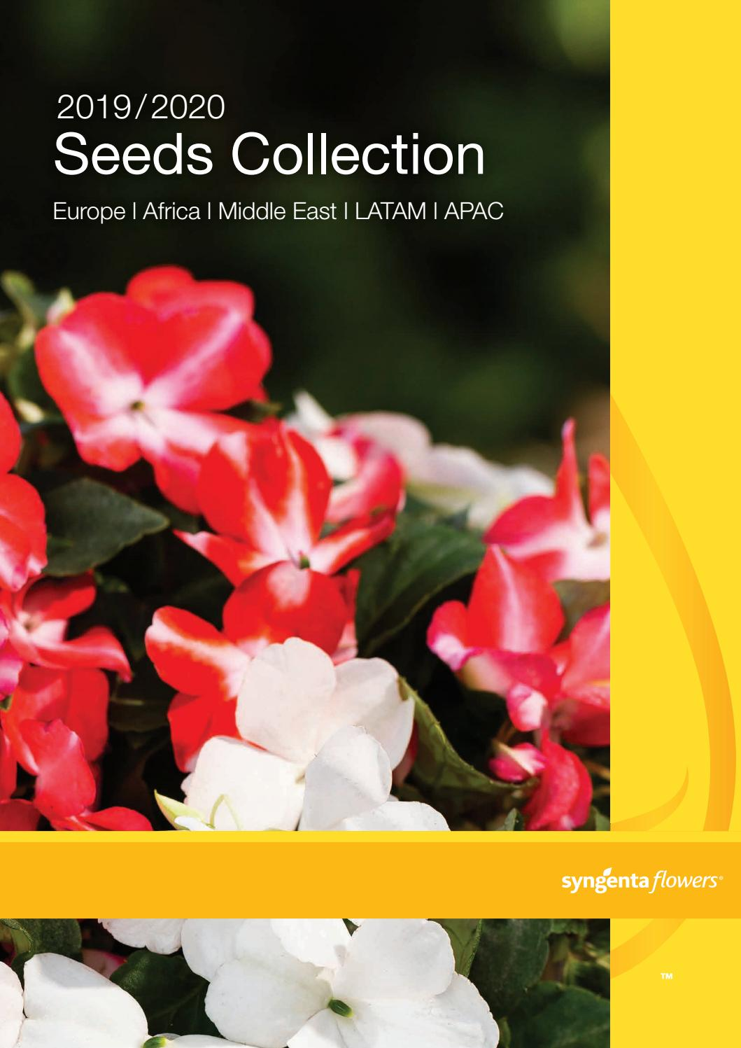 Speedy Seed 6 in 1 Seed Collection Range for Easy Gardening Hanging Baskets