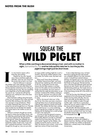 Page 30 of Squeak The Wild Piglet