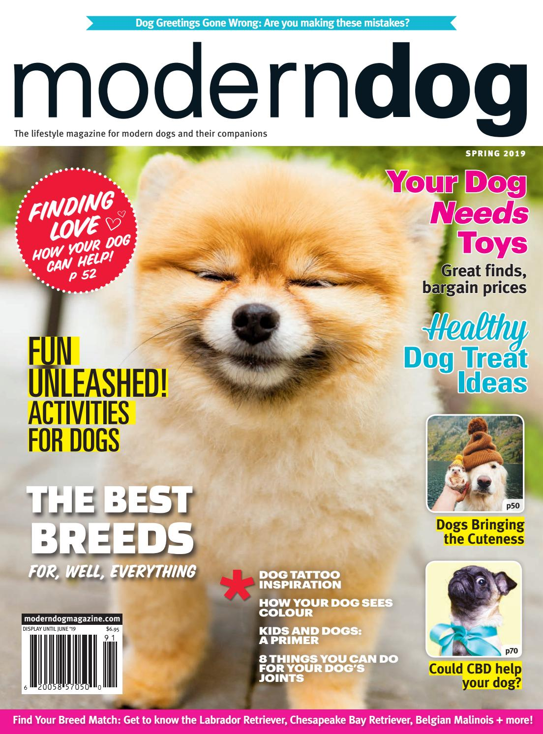 Modern Dog Spring 2019 By Modern Dog Magazine Issuu