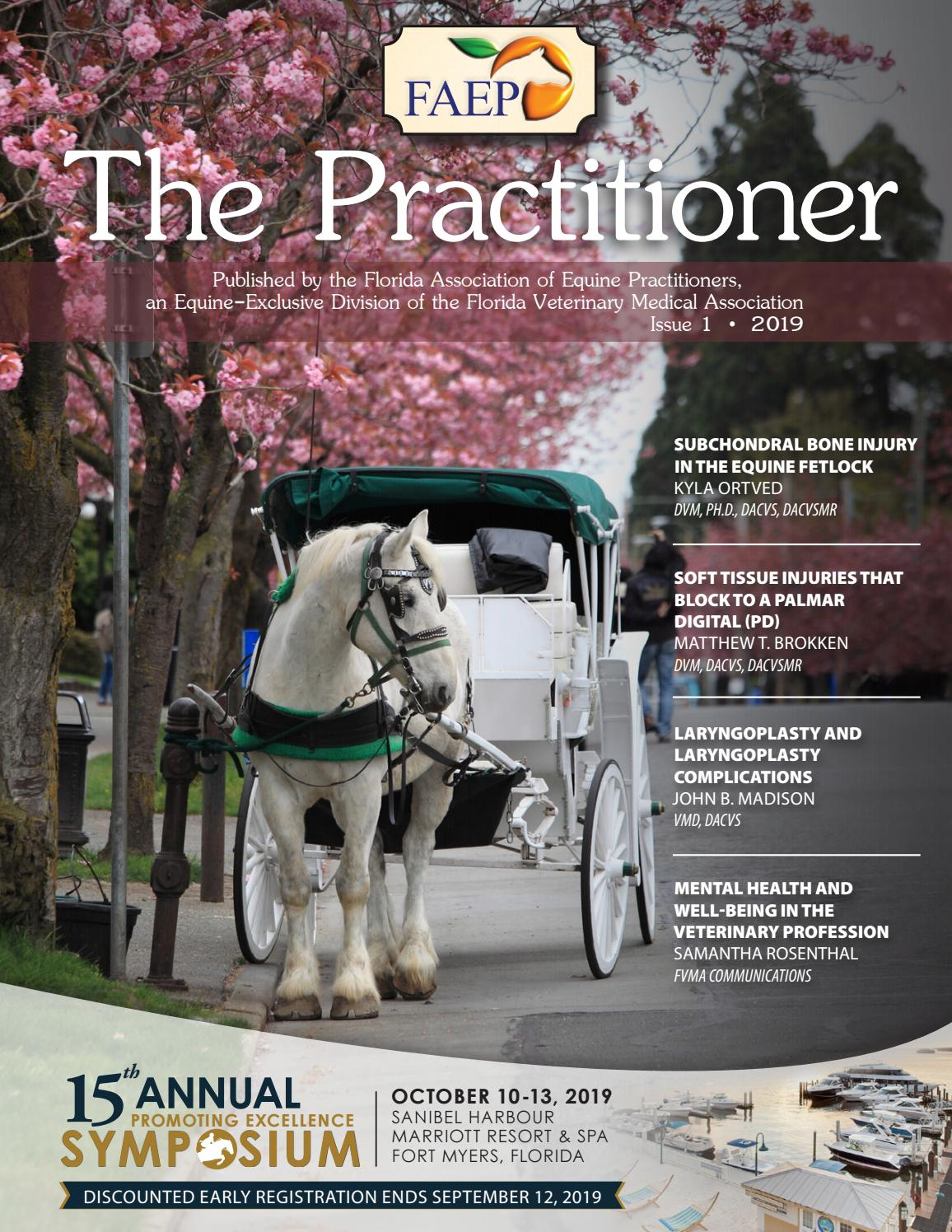 FAEP Practitioner Issue 1, 2019 by FVMA - issuu