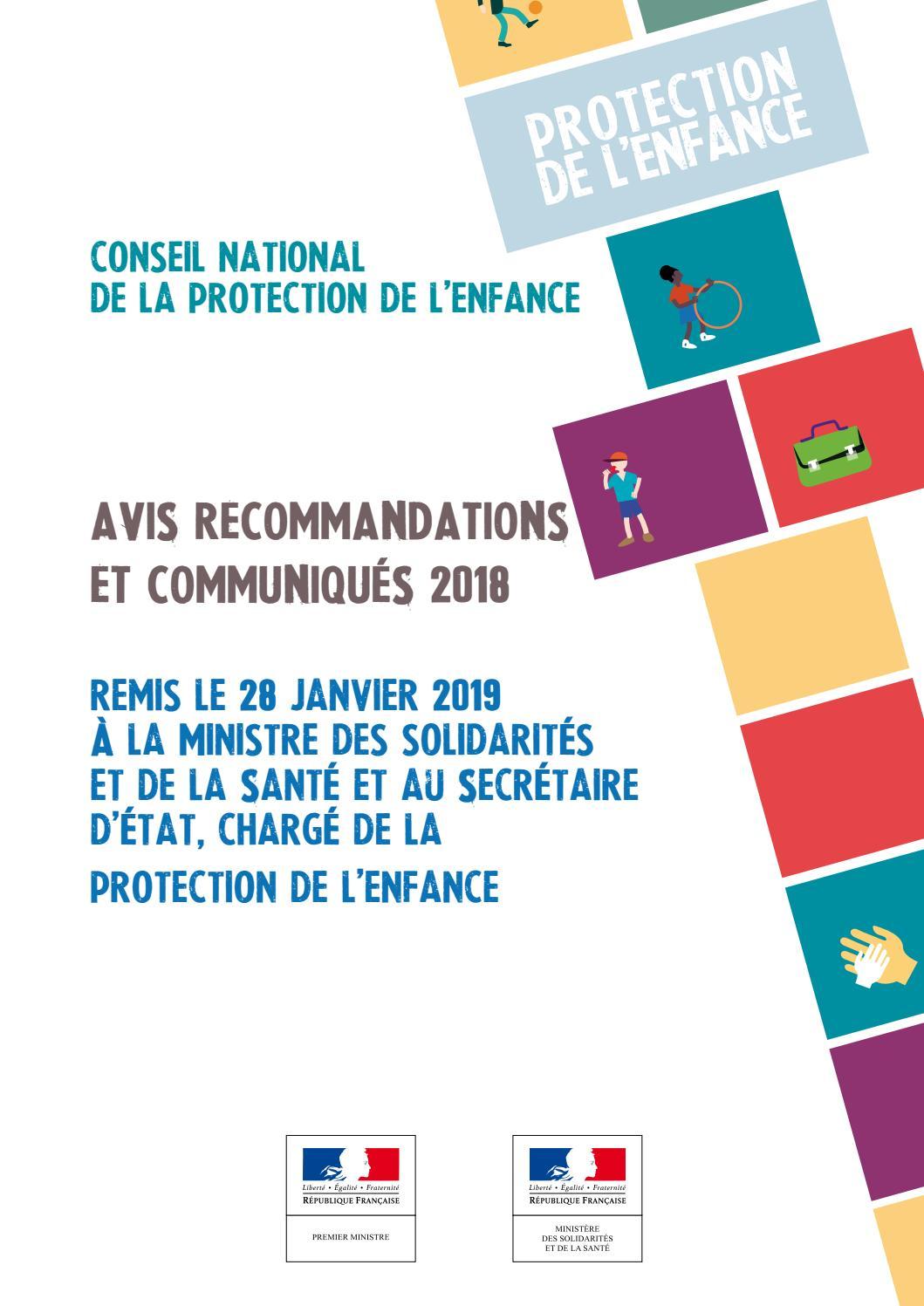 Cnpe Avis Recommandations Et Communiques 2018 By Ministeres