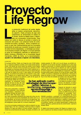 Page 20 of Salvar las tierras del olivo