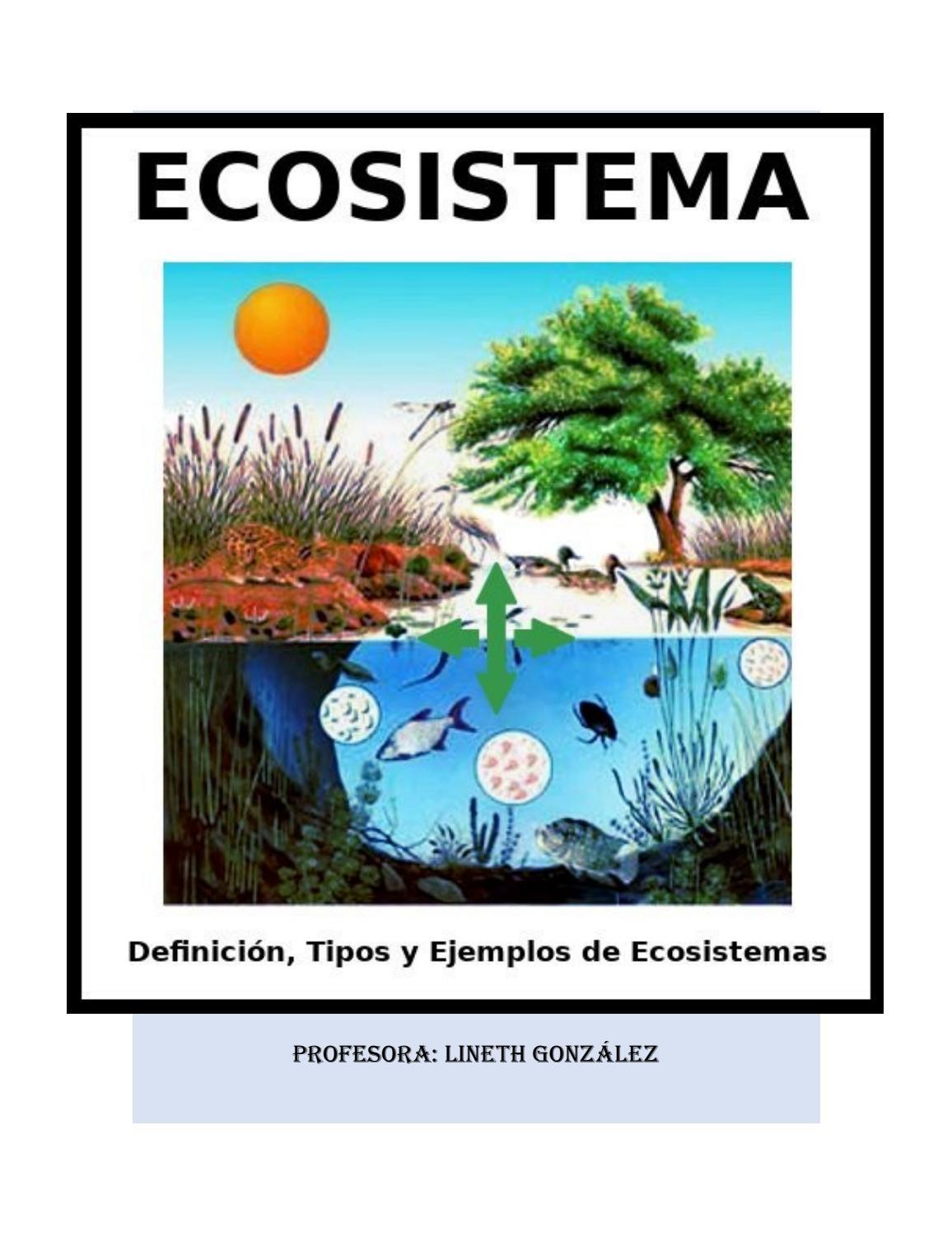 Tipos De Ecosistemas By Lyneth2891 Issuu