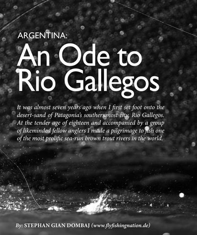 Page 119 of An Ode to Rio Gallegos