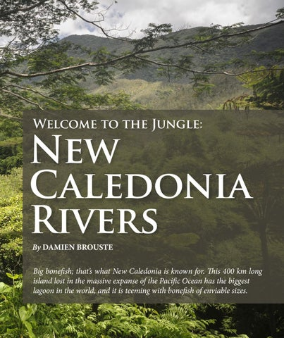 Page 149 of New Caledonia Rivers