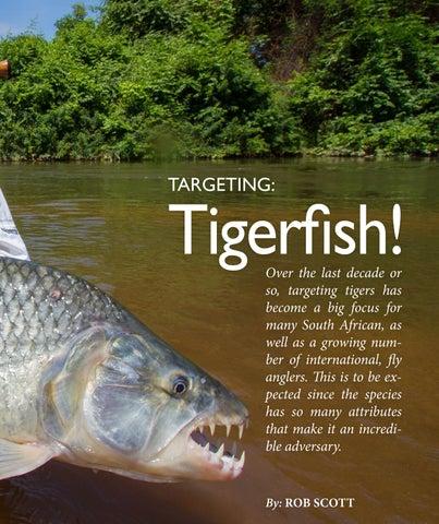 Page 193 of Targeting Tigerfish