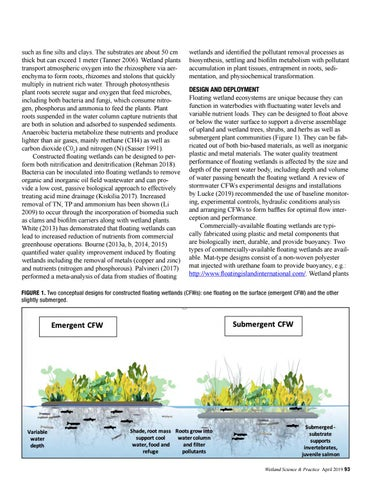 Page 25 of Reviving Urban Ecosystems with Constructed Floating Wetlands