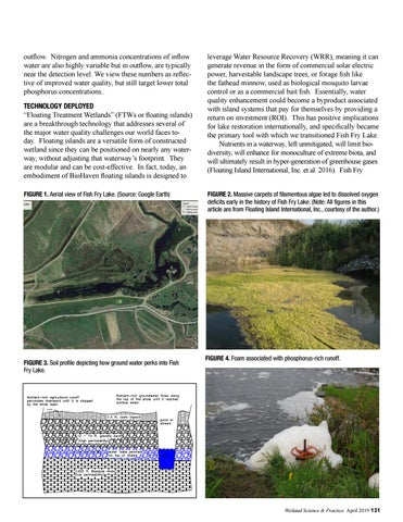 Page 63 of Fish Fry Lake: Perspectives from an Inventor on the Application of Created Floating Islands for Water Quality Renovation