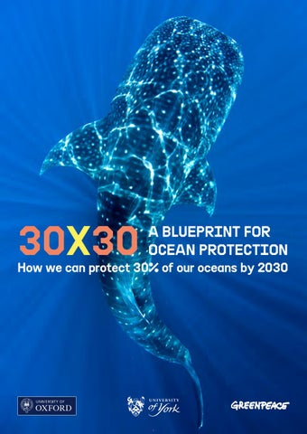 30×30: A Blueprint for Ocean Protection by Greenpeace Thailand - issuu