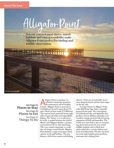 Page 4 of Alligator Point, Florida