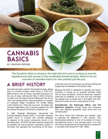 Page 11 of Cannabis Basics