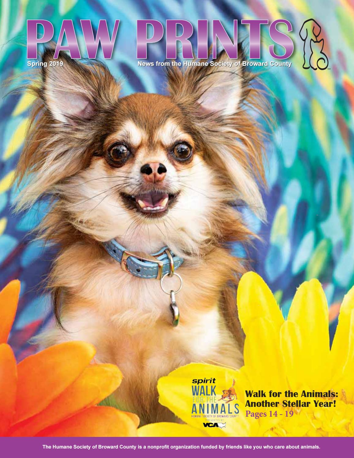 Paw Prints Summer 2019 Edition by Humane Society of Broward