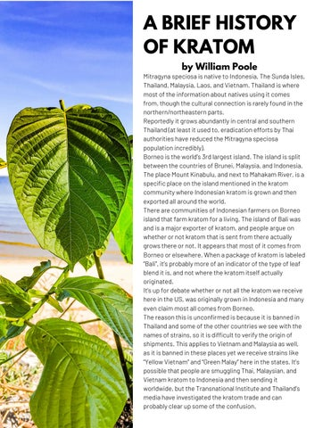 Page 10 of A Brief History of Kratom