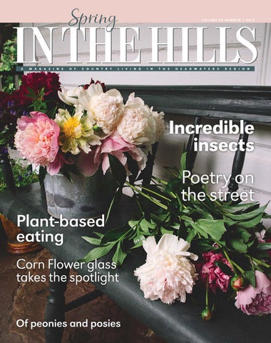 6f733d0e56f Winter In The Hills 2017 by In The Hills Magazine - issuu