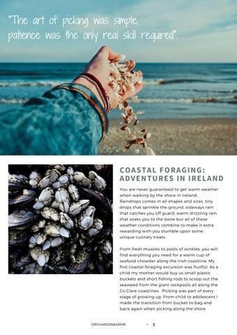 Page 4 of Coastal Foraging: Adventures in Ireland