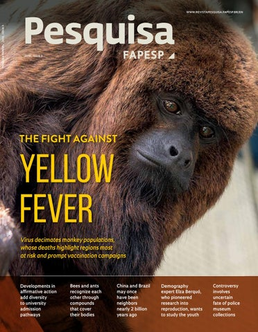 073f39a5 The fight against yellow fever by Pesquisa Fapesp - issuu