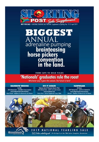 2019 Nys Sale Supplement By Sporting Post Issuu