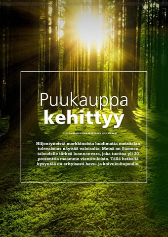 Page 42 of Puukauppa kehittyy