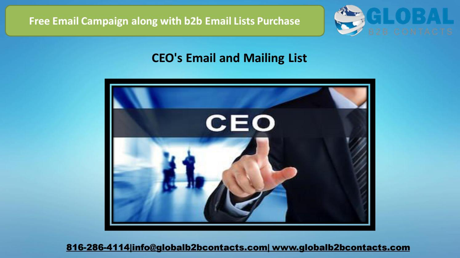 CEO's Email and Mailing List