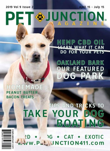 Page 1 of The April Issue of Pet Junction is Out!