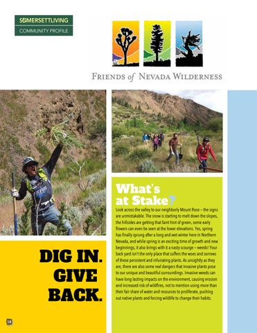 Page 18 of Dig in and Give Back