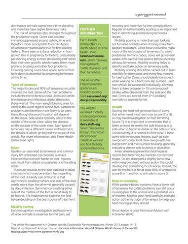 Page 29 of Best Hoof Forward