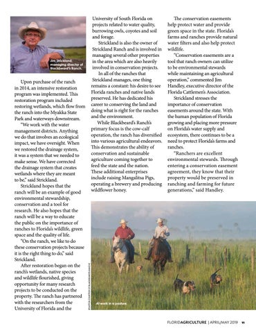 Page 11 of Conserving Farm Lands Forever