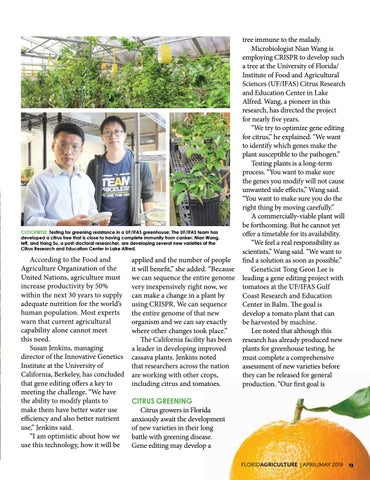 Page 13 of Toward Better Food Plants