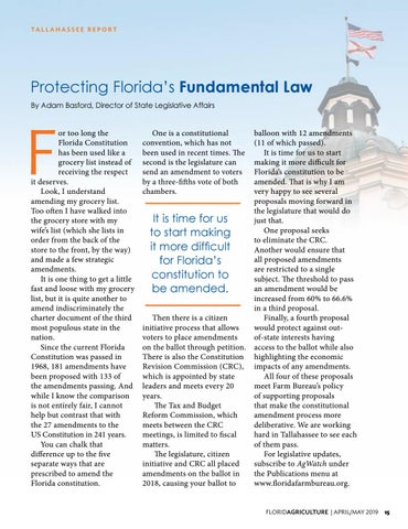 Page 15 of Protecting Florida's Fundamental Law