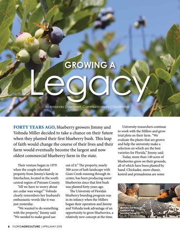 Page 6 of Growing A Legacy