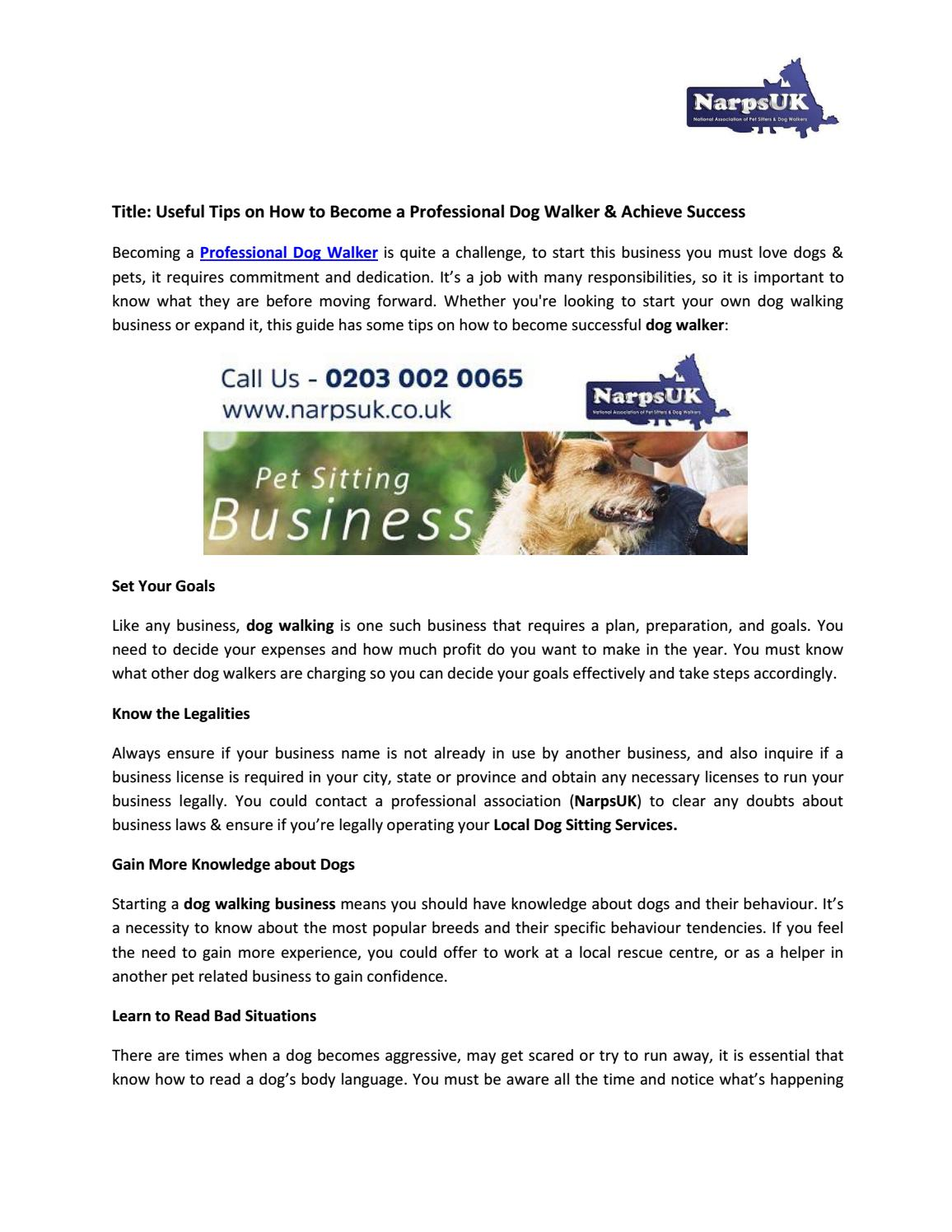 Useful Tips on How to Become a Professional Dog Walker