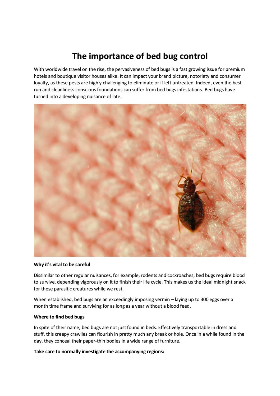 The Importance Of Bed Bug Control By Smart Care Cleaning