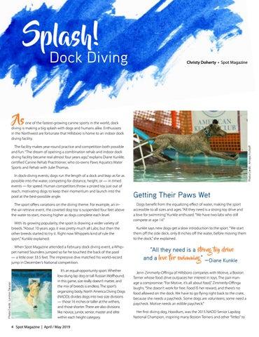 Page 4 of Splash!