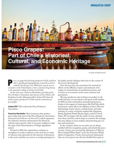 Page 31 of Grapes: Part of Chile's Historical, Cultural, and Economic Heritage