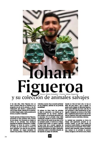 Page 34 of Iohan Figueroa's Menagerie
