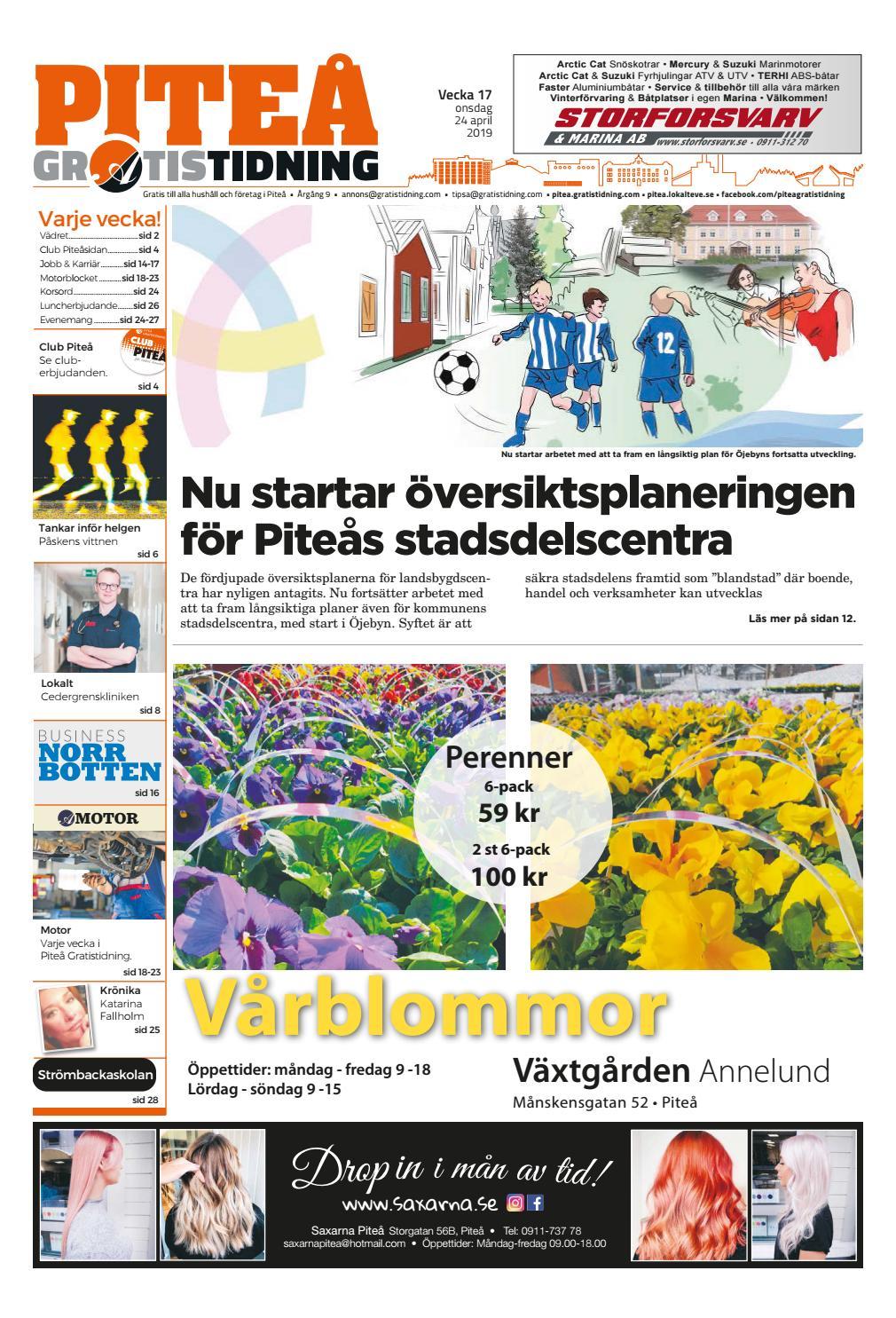 a9241e7b222 Piteå Gratistidning vecka 17, 2019 by Svenska Civildatalogerna AB - issuu