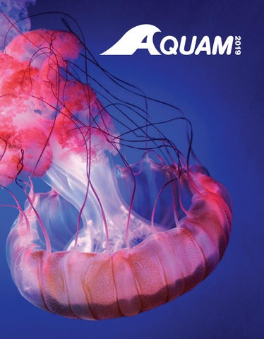 ba77e932972e0 AQUAM - CATALOGUE - EN - 2019 by AQUAM - issuu