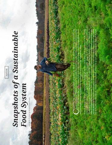 Page 34 of Snapshots of a Sustainable Food System