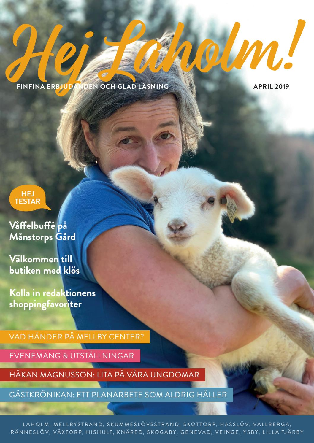 Magasin Laholm sommar 2010 by MacMedia - issuu