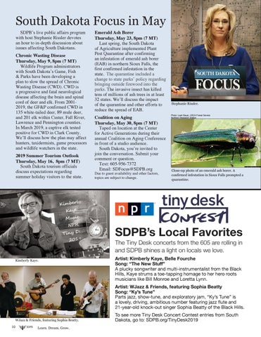 Page 10 of NPR Tiny Desk Concerts: SDPB's Local Favorites