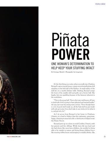 Page 23 of Pinata Power