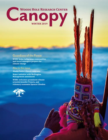 foto de Canopy - Winter 2019 by Woods Hole Research Center - issuu
