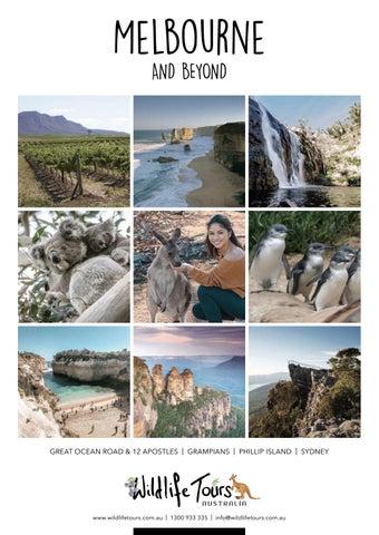 Wildlife Tours 2019/20 Brochure by Jase - issuu