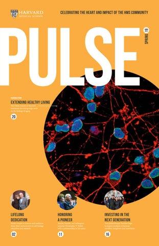 Pulse | Spring 2019 by Harvard Medical School - issuu