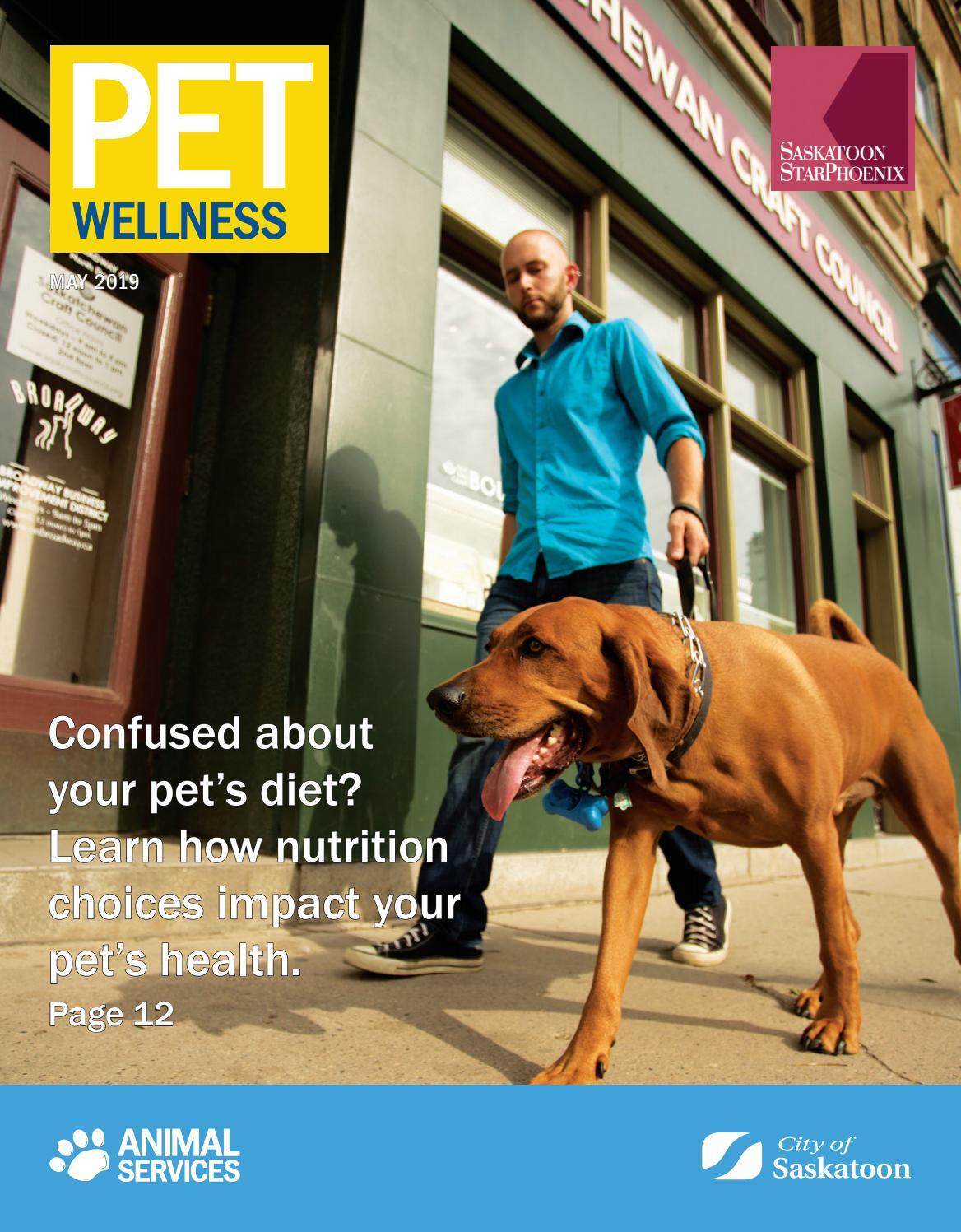 Pet Wellness 2019 Feature By Postmedia Saskatchewan Issuu