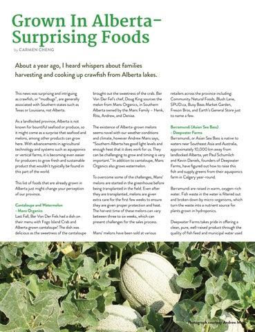 Page 15 of Grown In Alberta– Surprising Foods