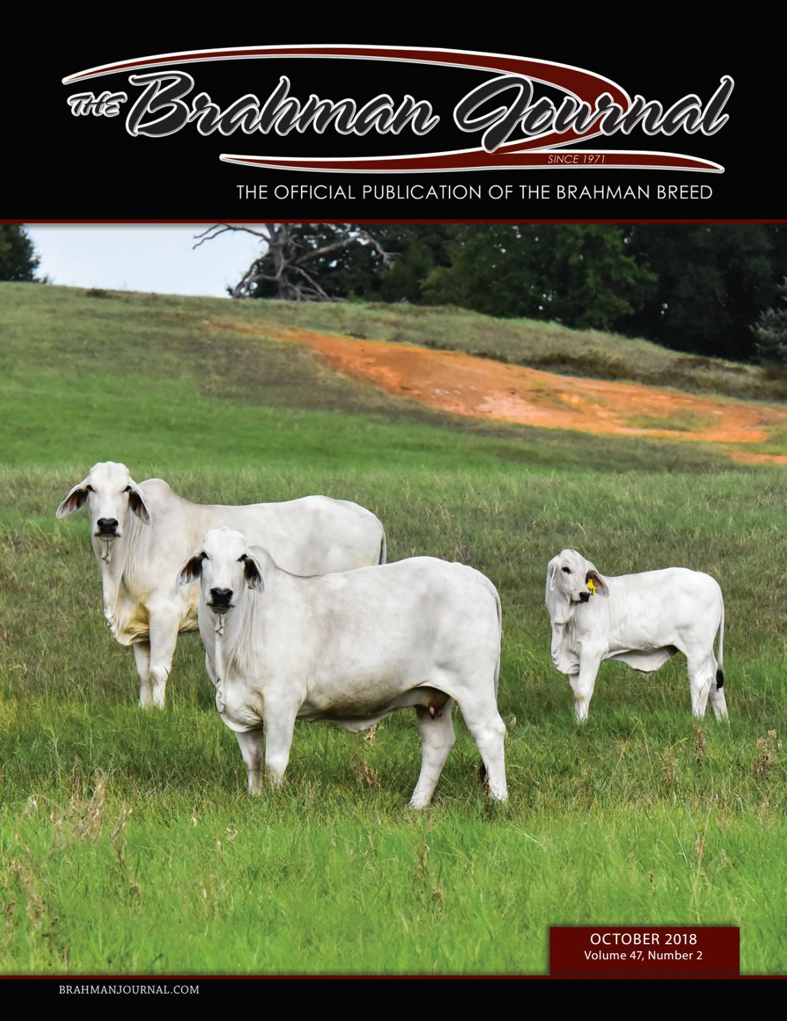 The Brahman Journal - October 2018 by Caballo Rojo Publishing ...