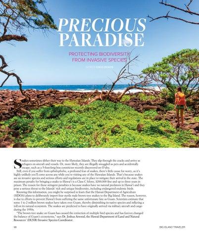 Page 100 of Precious Paradise